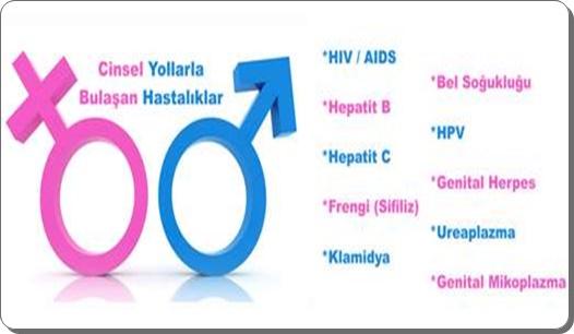 Turkiyede cinsel hastalk olusumu ve korunma yollari